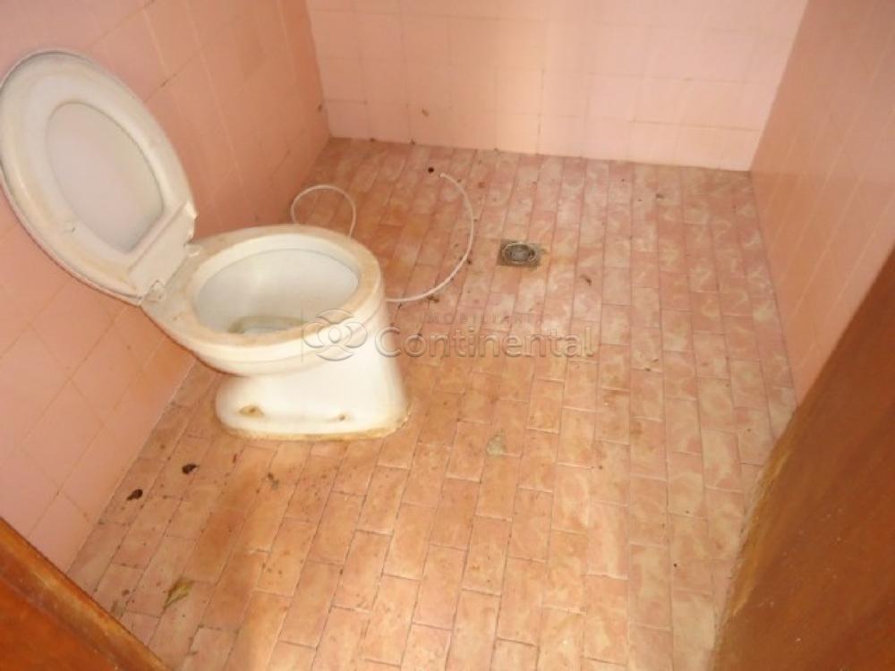 Alugar Casa / Padrão em Dourados R$ 3.900,00 - Foto 16
