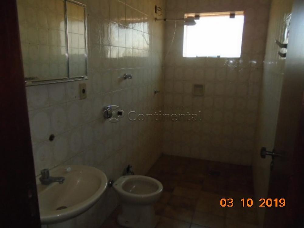 Alugar Apartamento / Padrão em Dourados R$ 700,00 - Foto 11