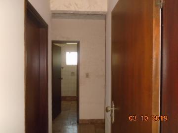 Alugar Apartamento / Padrão em Dourados R$ 700,00 - Foto 7