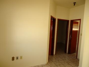 Alugar Apartamento / Kitinete em Dourados R$ 660,00 - Foto 9