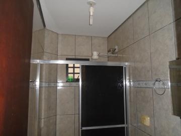 Alugar Apartamento / Kitinete em Dourados R$ 600,00 - Foto 11